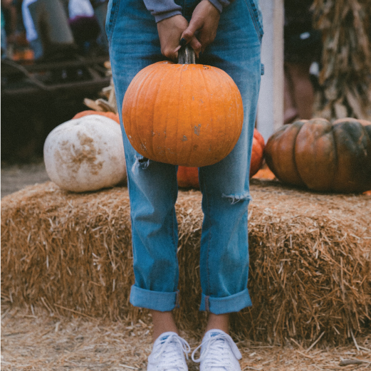 It's Pumpkin Facial Season.